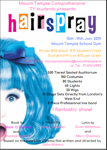TY pupils will perform Hairspray (the Musical) in January 2019